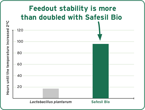 feedout-stability