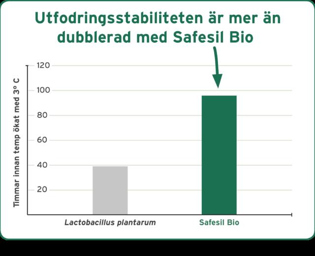 graf_bakterier